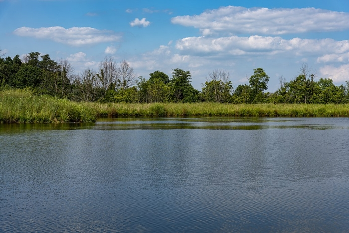 Natural lake excavation in WI | Pond contractors & engineers for